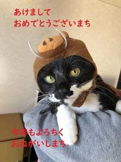 5年賀のハク子氏.jpg