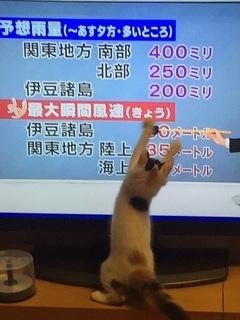 平井さんと�B.jpg