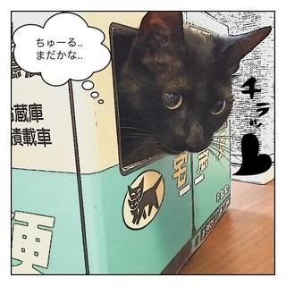 ごまちゃん 4.jpg